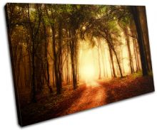 Forest Road Landscapes - 13-1882(00B)-SG32-LO